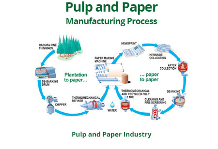 3 Trends To Look Out For Pulp And Paper Manufacturing This Year